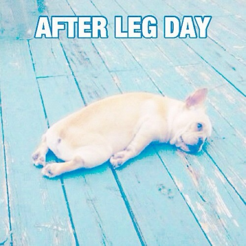 After Leg Day